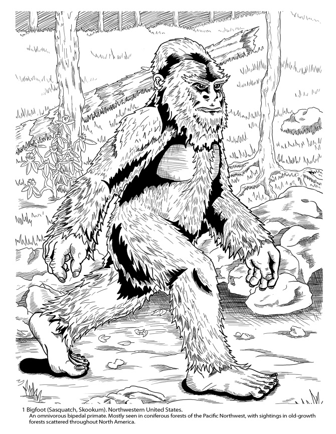 Cryptozoology Coloring Book